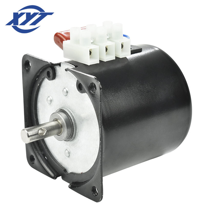 XYT 220V 50Hz Single Phase Synchronous Motor 60KTYZ Mini AC Motors for BBQ