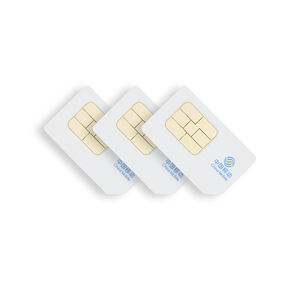 Seeworld china international sim card year cost cheap compatible with 2g 3g 4g gps tracker with system