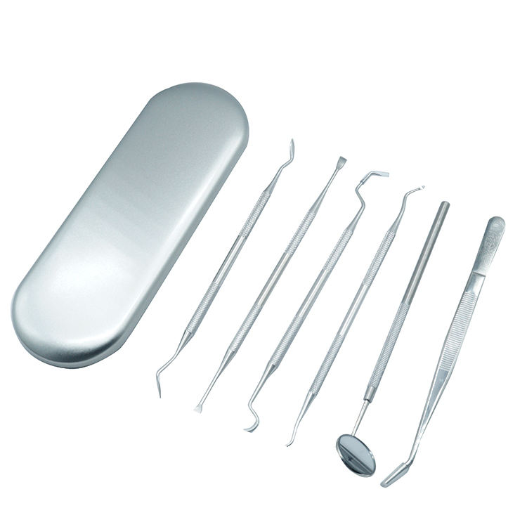 6Pcs/set Dental Tools Dental Pick Floss Stainless Steel Dental Hygiene Tool Set for Personal Oral Care Pet Use