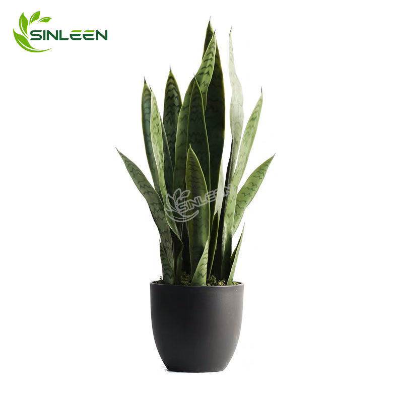Indoor Sansevieria Plant Artificial Plastic Snake Trifasciata Mother Law Tongue Tree