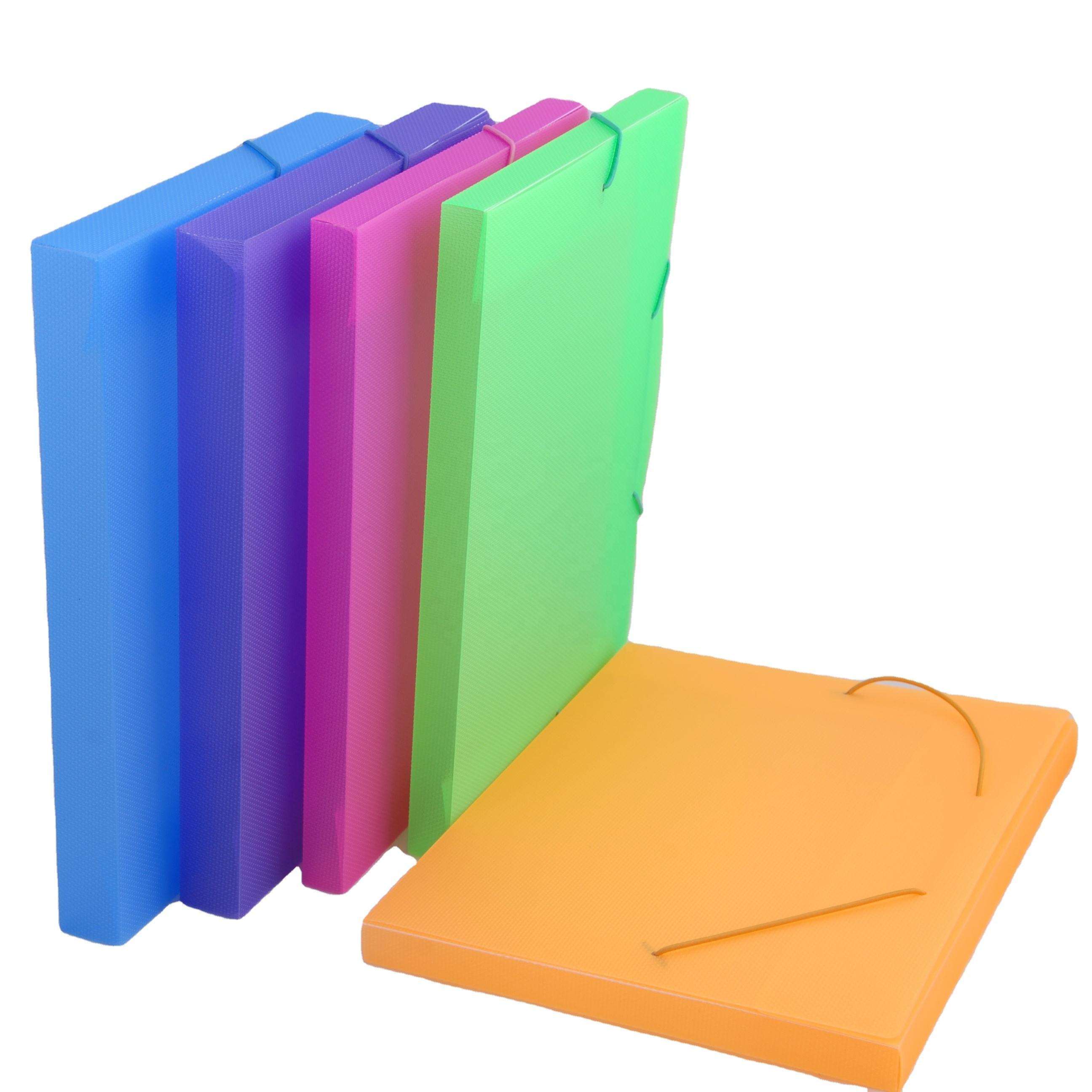 Office Supplies Plastic A4 File Boxes PP Plastic Document Carry Case