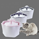 Wholesale plastic pet smart water dispenser automatic circulation dog cat water dispenser supplies