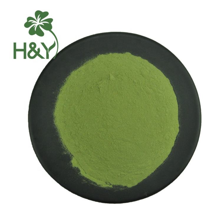 Food Grade High-quality Wheat Grass Juice Powder, Wheatgrass Powder for Food and Beverage