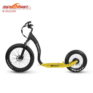 48V 500w 750W big tire Adult electric Kick Bike electric foot scooter electric push bike