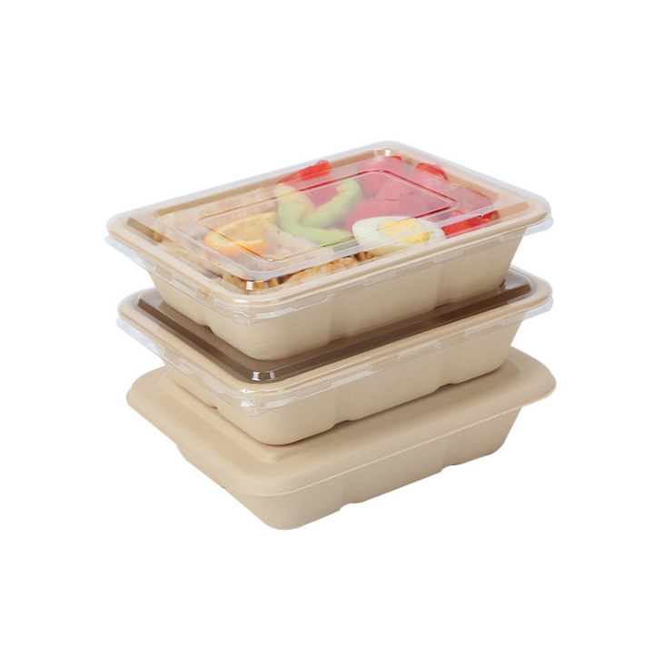 Disposable bamboo pulp material Biodegradable Eco-friendly paper lunch bento box
