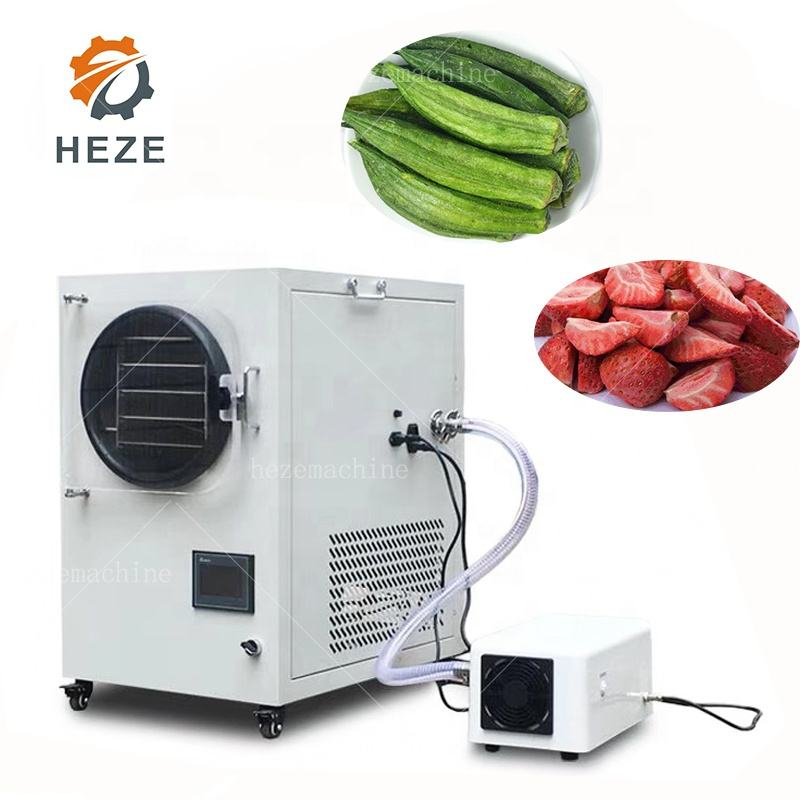 Cheap Mini Vacuum food freeze dryers sale /industrial freeze dryer/ lyophilizer price with LCD displayer