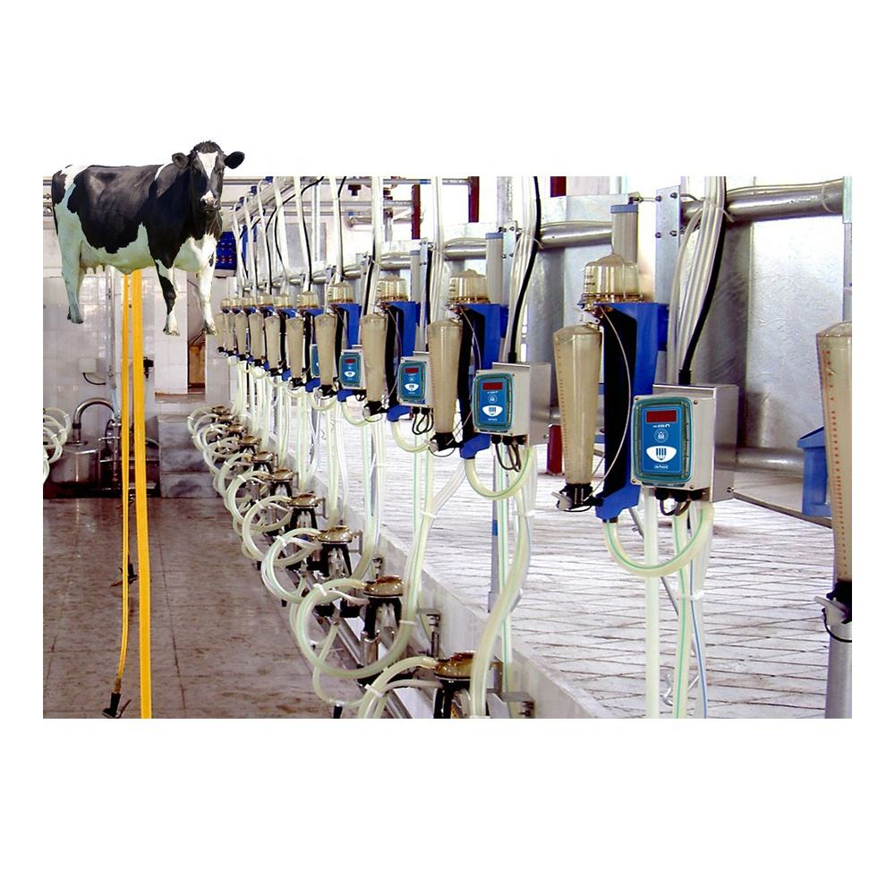 Rotary Parallel Fishbone automatic cow goat sheep milking machine for cows