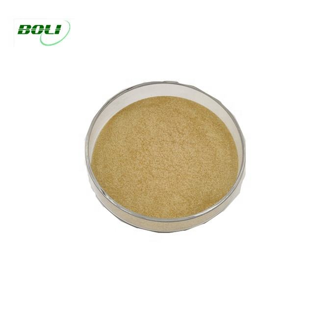 Powder Acid Protease AP-5000 Enzyme for Protease Hydrolysis