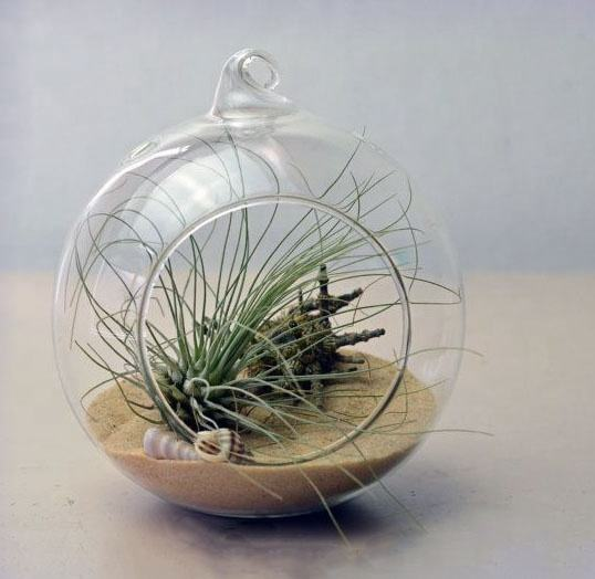 MH-L026 clear air glass plant terrarium Hanging glass balls Orb sphere terrarium glass terrarium Ornaments