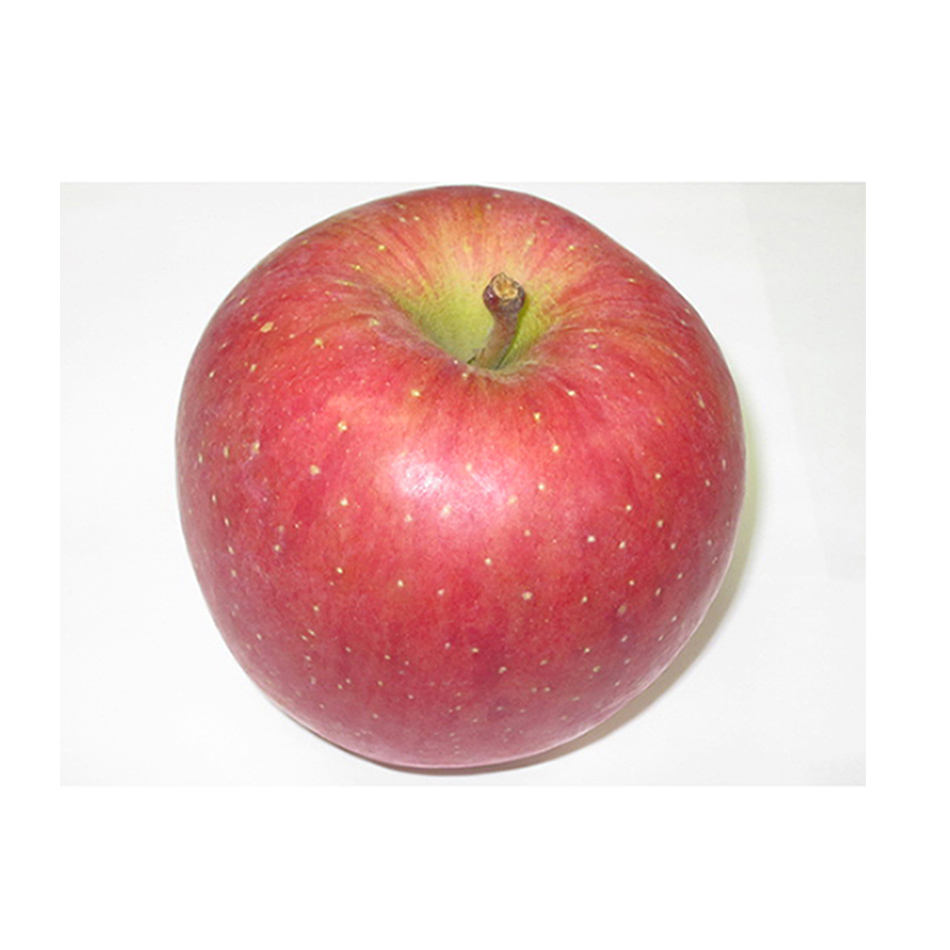Wholesale Japanese San Fuji apple with with high quality custom