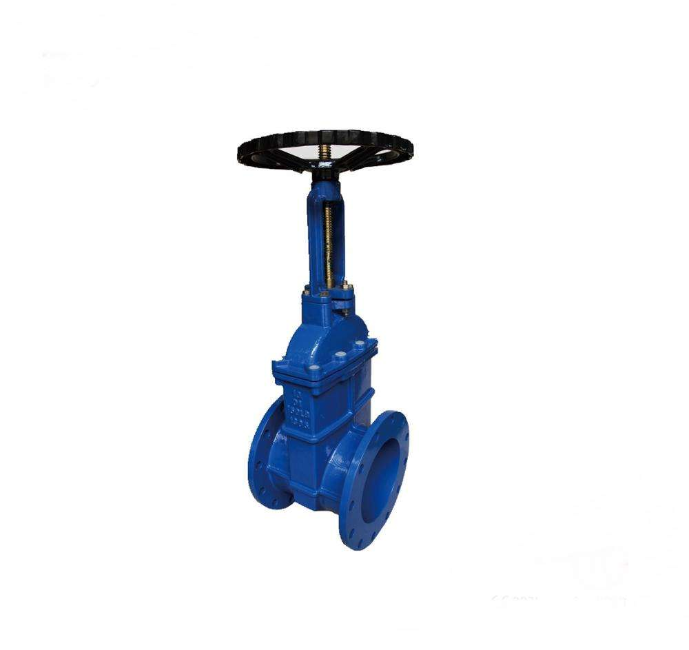 32mm diameter ductile iron casting resilient seated gate valve
