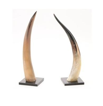 Table Decorative Long Horn with wooden Base