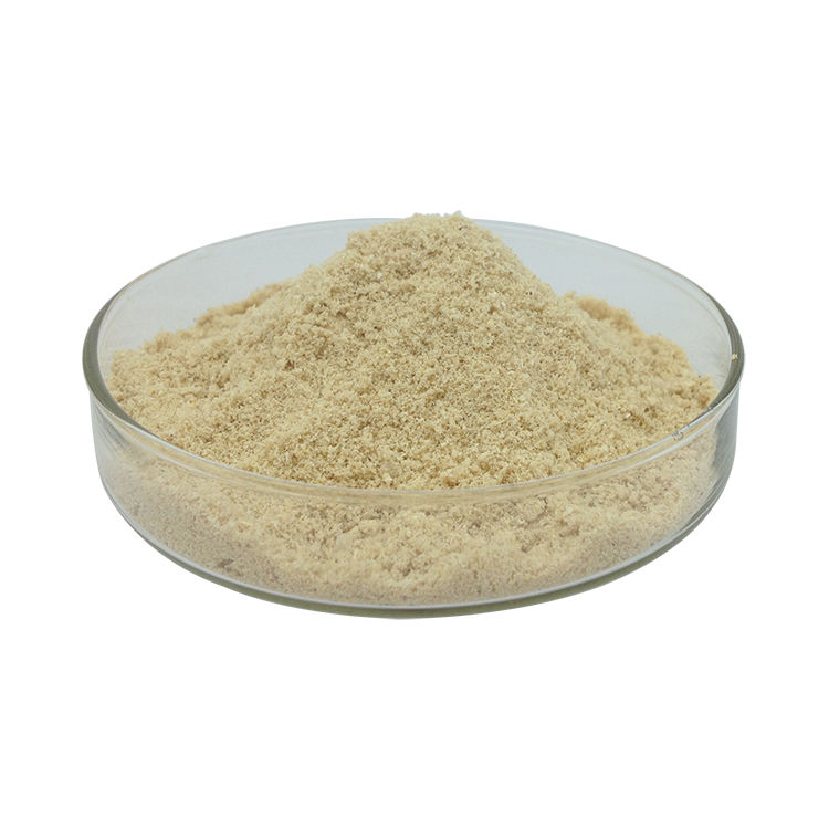 Pincredit Natural Lemon Fruit Powder Freeze Dried Lemon Powder