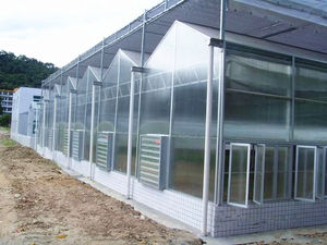Polycarbonate green house greenhouses for agriculture