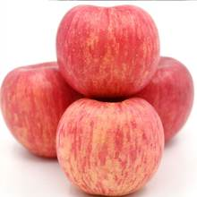 Fresh red green tasty fuji qinguan gala apple