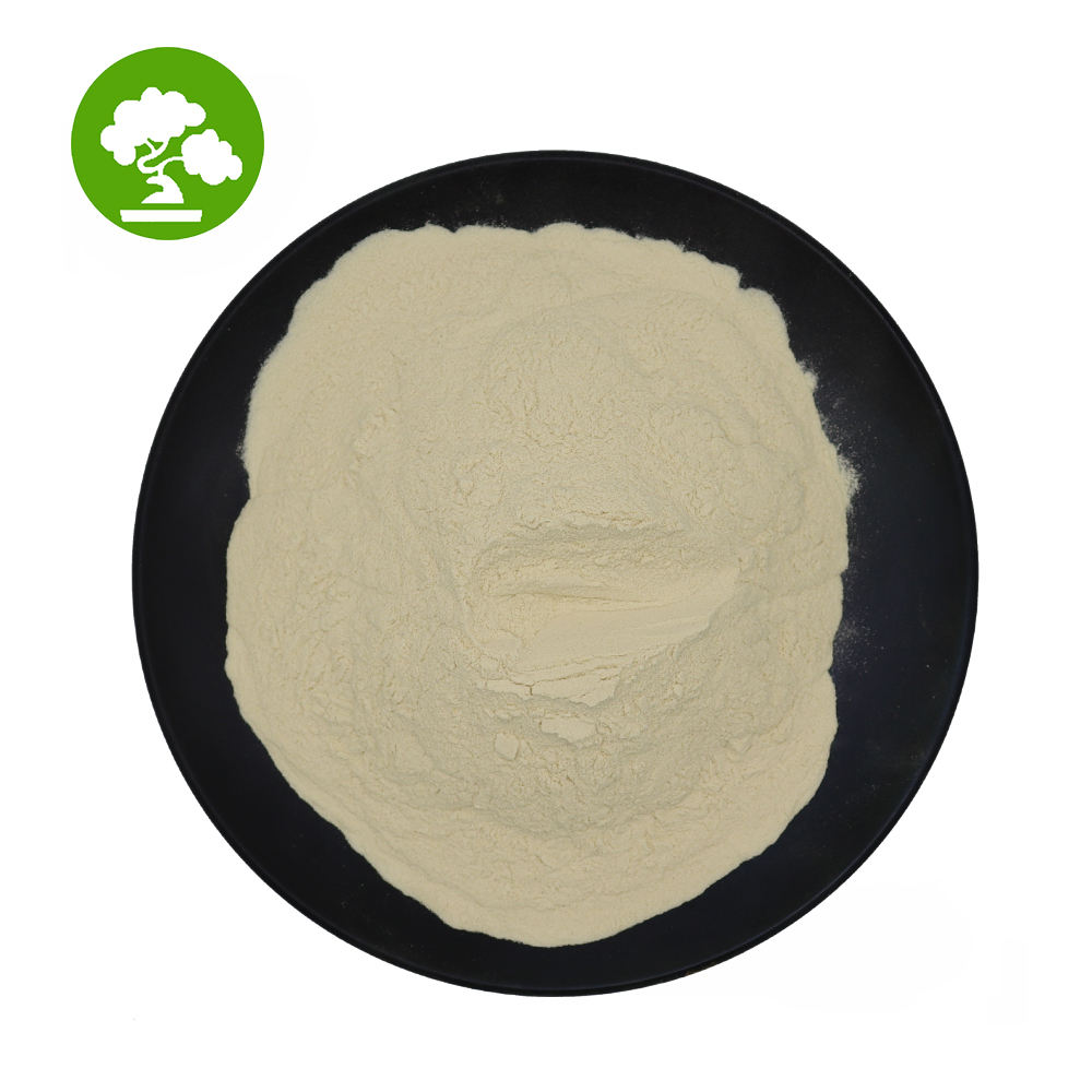 Best Quality 80% Sport Whey Protein Powder Whey Protein Isolate