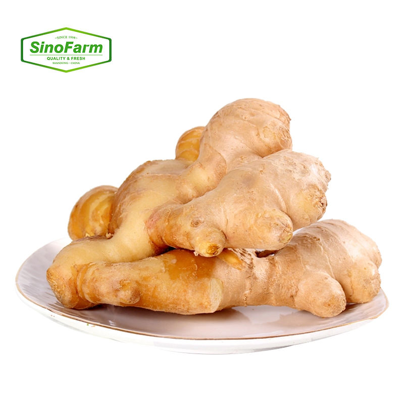 Chinese新鮮なOrganic野菜Manufacturers Direct Selling Ginger価格あたり1キロChina