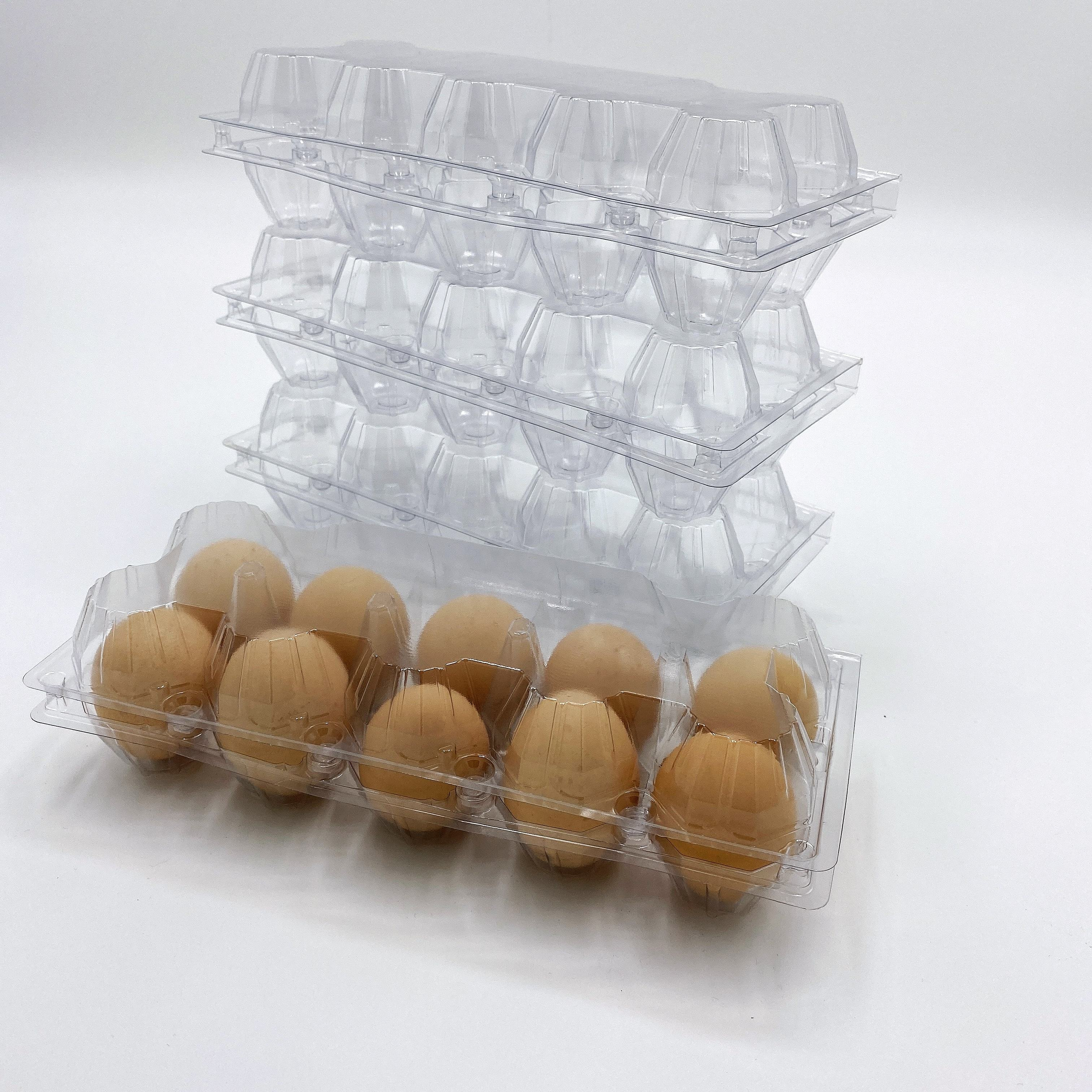New Design Original Square Pet Pvc Ps Packing Packaging Quail Egg Tray