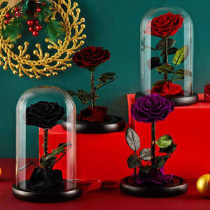 Valentines Gifts Long Stem Flowers Natural Preserved Long Life Glass Dome Stabilized Eternal Roses with Gift Box