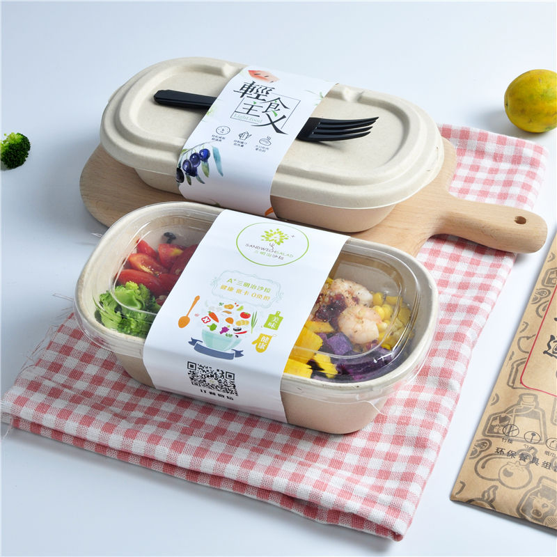 Rectangular [ Lunch Box ] Biodegradable Lunch Box High Quality Biodegradable Disposable Paper Pulp Takeaway Food Container Lunch Box