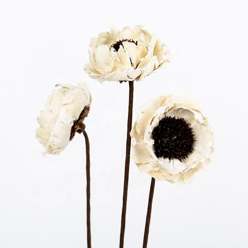A-1098 Dry Corn Poppy Flower Artificial Dried Flower For arrangement Decoration For Vase