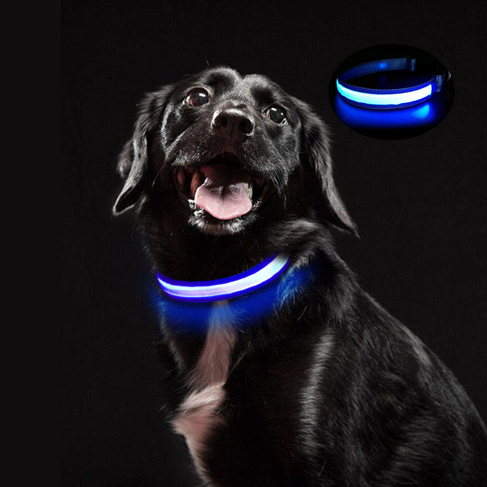 High Quality Pet Accessories Adjustable Rechargeable LED Flashing Charm Dog Collar