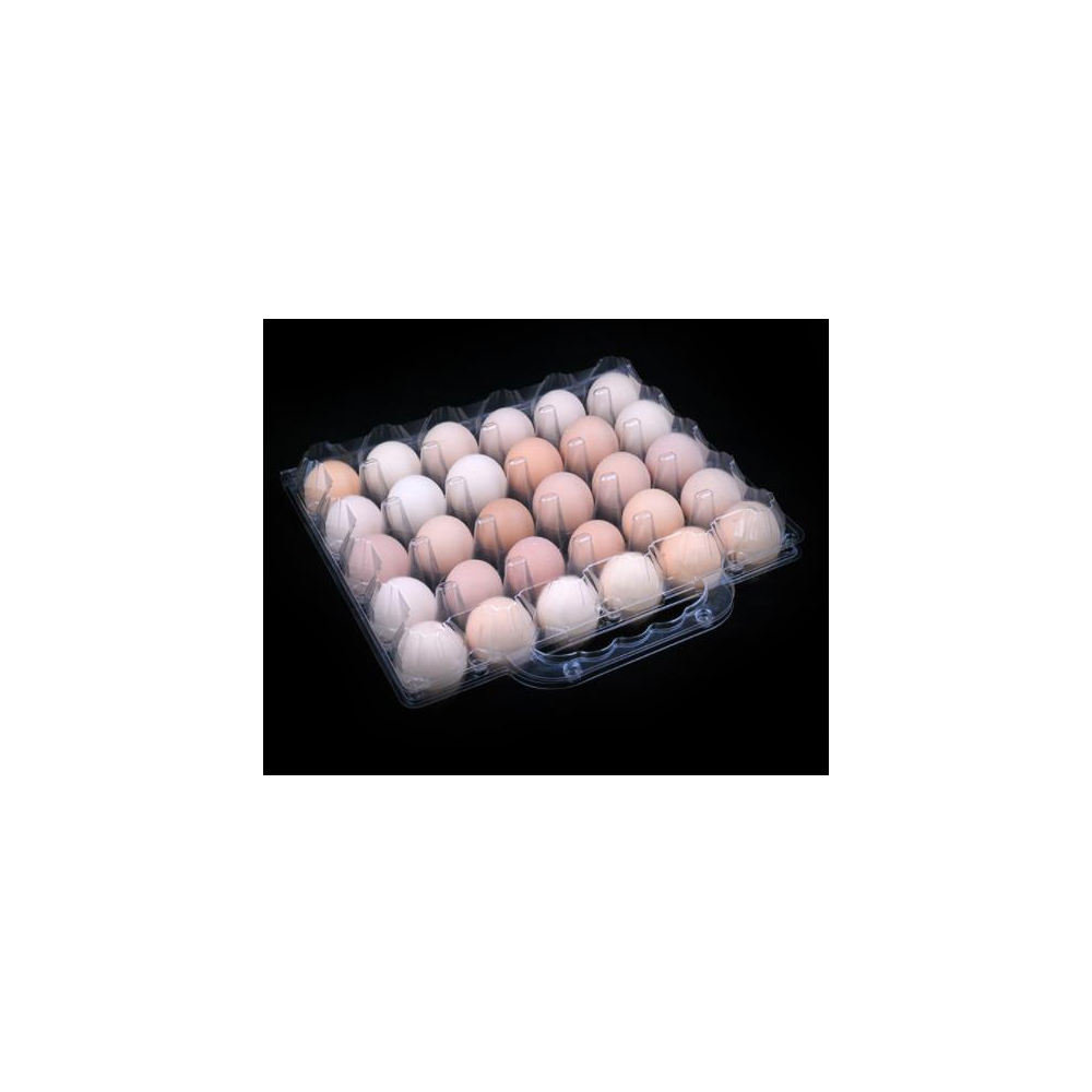 good quality 30 cell plastic pvc blister egg tray box with handle