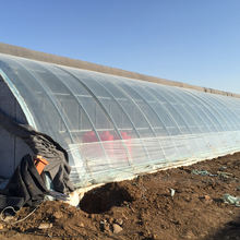 Low Cost PO Film Covered Solar Greenhouse For Seedling Growing