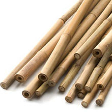 Natural Straight Plant Stick Bamboo Support For Sales