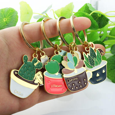 Huajing Hot selling creative delicate succulent plant enamel pin keychain for promotional gifts