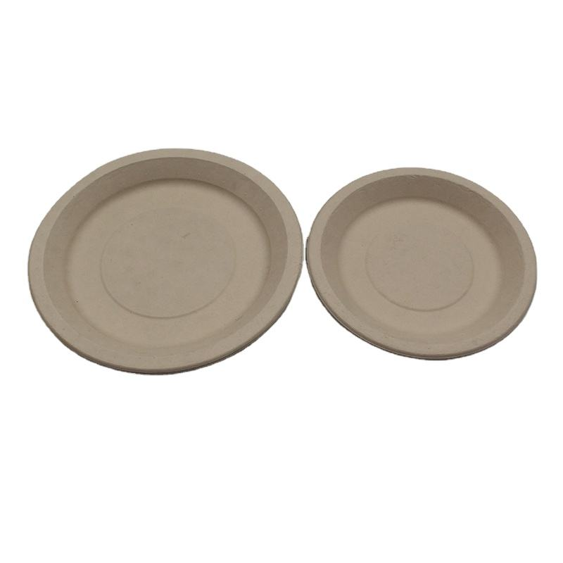 Environmentally friendly biodegradable sugarcane bagasse plate