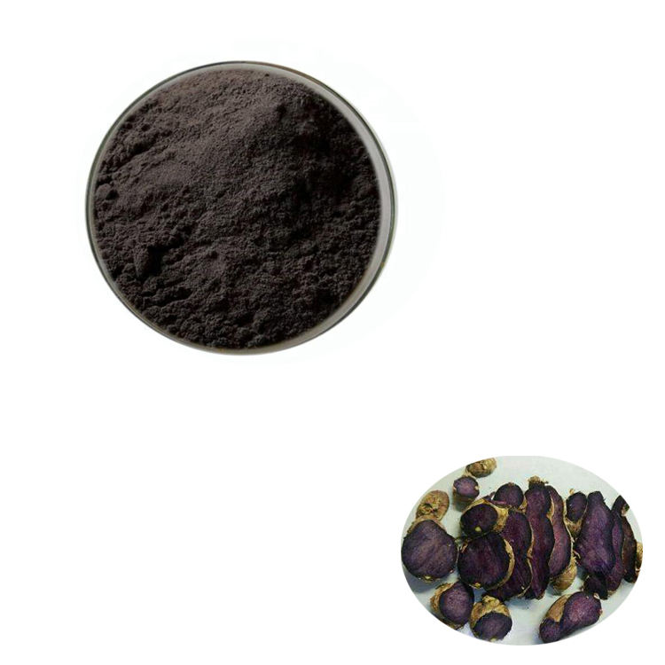 Wholesale Price 10:1 Black ginger Extract Powder by free shipping