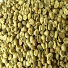 ROBUSTA COFFEE HIGH GRADE FOR ROASTING