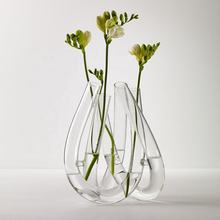 Wholesale glass vase hydroponic glass vase
