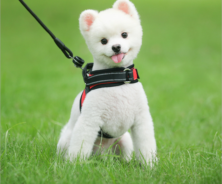 Pets Dog Harness Triangle Chest Strap And Collar With Reflective Stripe Traction For Walking Safety