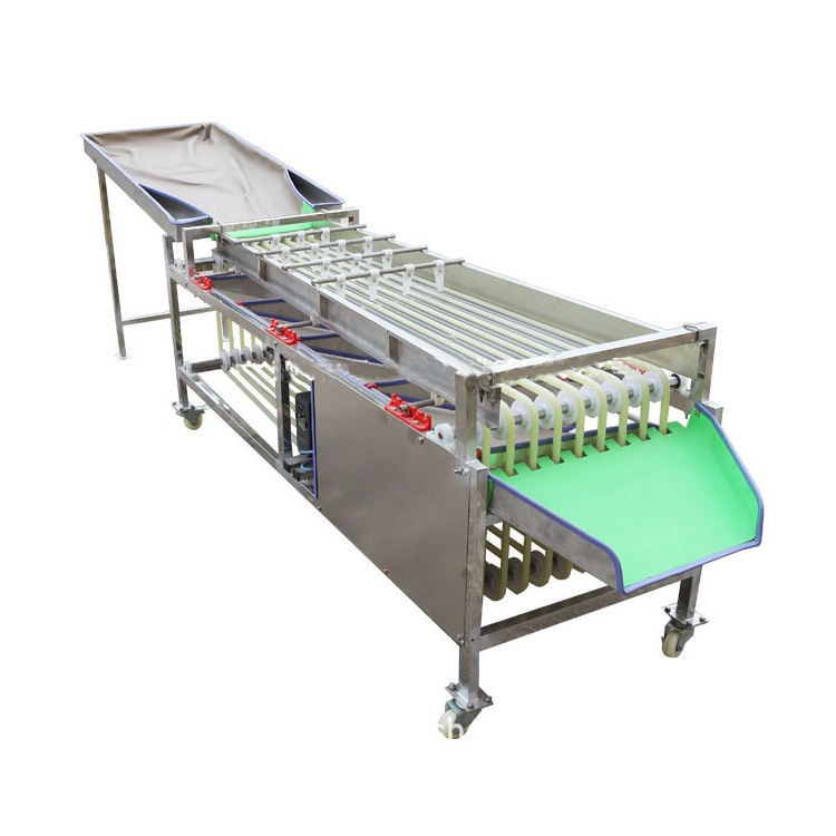 JYD Factory Price Winter Jujube Dates Red Palm Dates Grading Machine Grape Fruit Size Classifier Sorting Machine