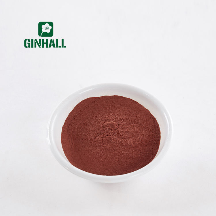 Top Quality Grape Seed Extract 95% UV Procyanidine OPC
