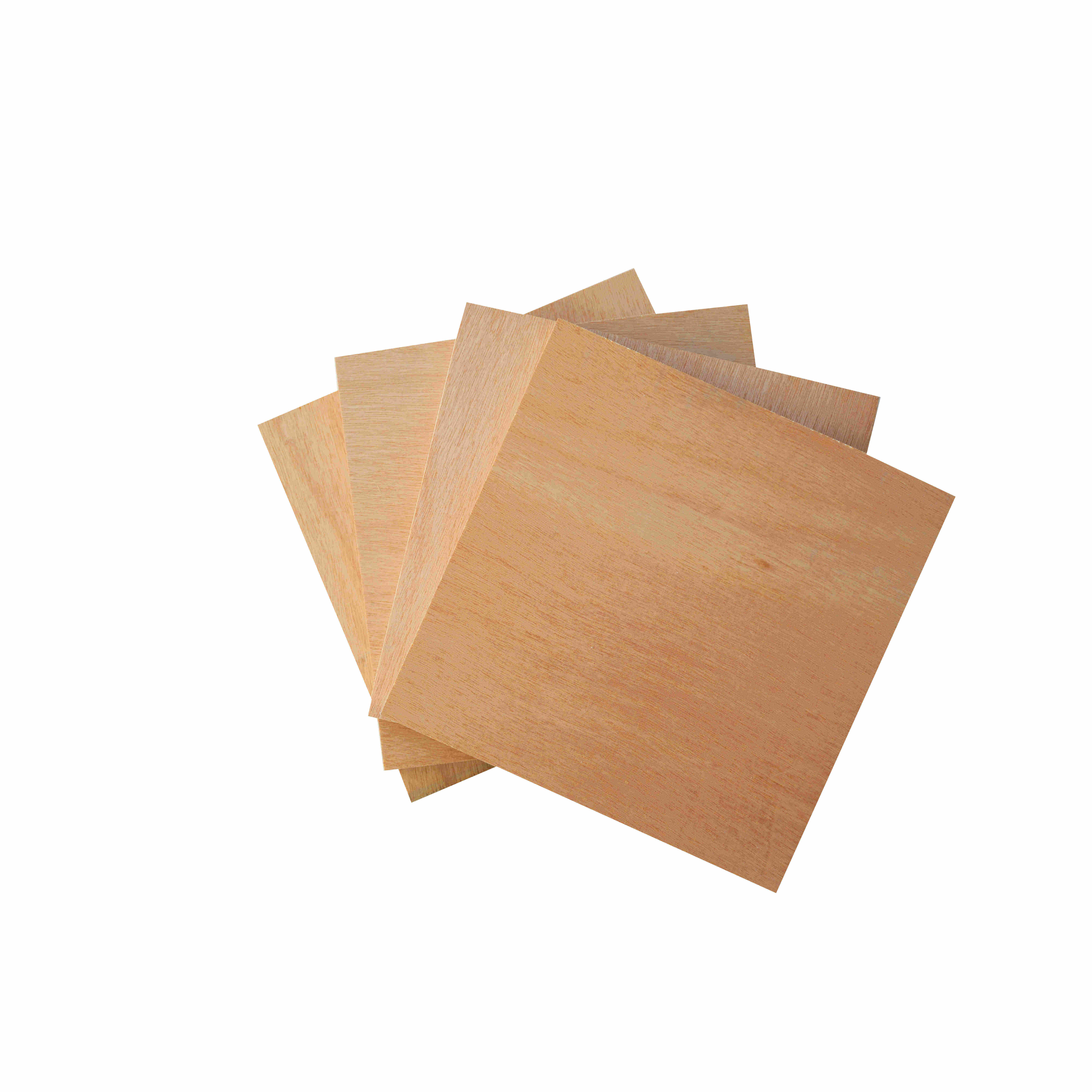 24mm Fancy Poplar Plywood