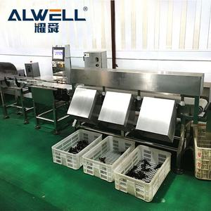 High Accuracy Automatic Industry Fish/Shrimp Weight Sorting Machine