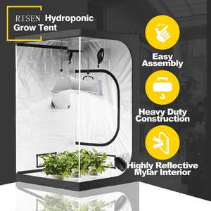 Box Hydroponic Full Kits Green 240X120x200 Kit Large One 600D Usa Dispatch Used For Sale Complete Big Grow Tent