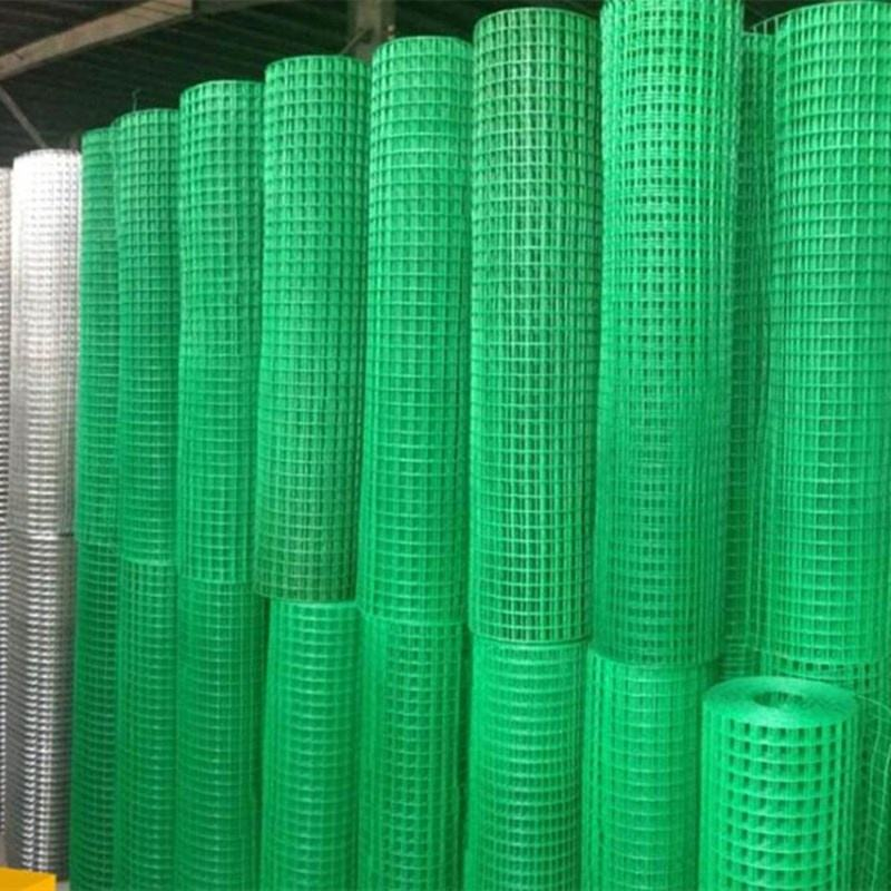 PVC Plastic Coated Welded Wire Mesh on Promotion