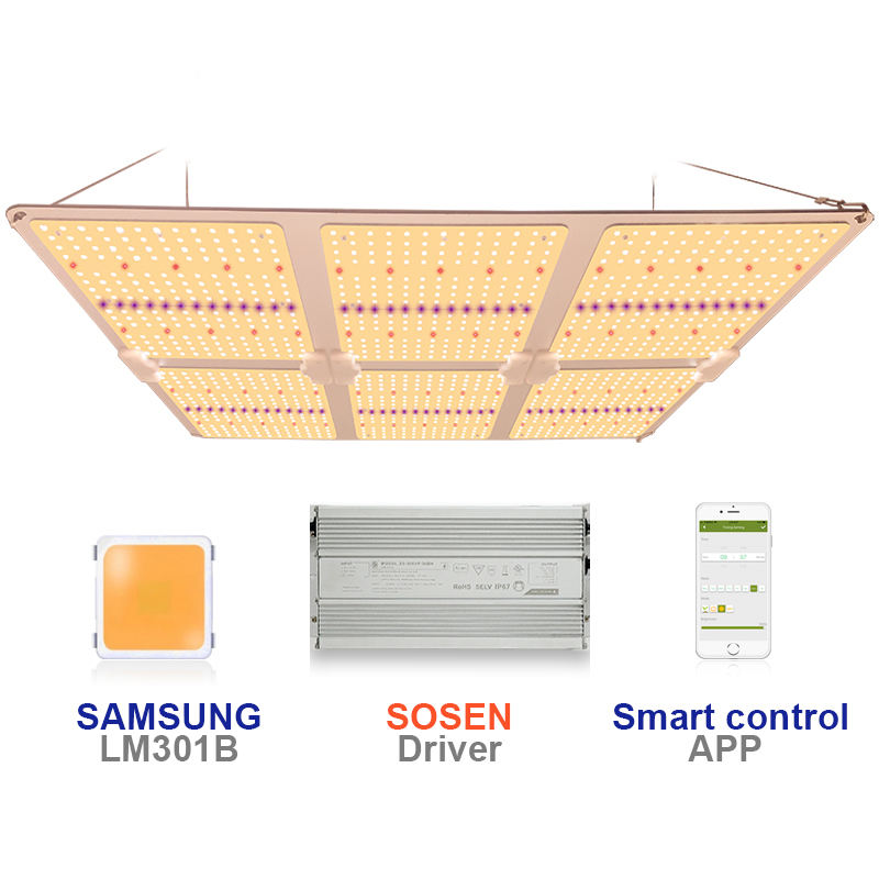 Boya SF6000 600w Samsung LM301H LM301B Panel Board Spectrum King Tent Kit SF 6000 LED Grow Light