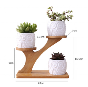 Simple white creative succulent owl with treetop bamboo frame zakka combination potted ceramic plant pots