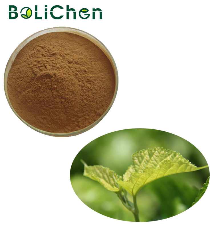 Mulberry Leaf Extract 1-deoxynojirimycin Plant Extract Liquid