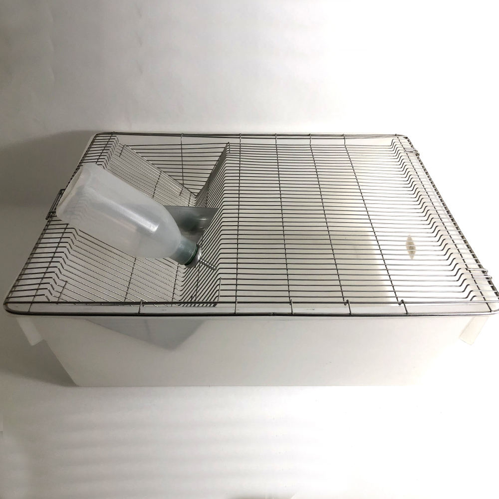 mouse group breeding rat breeding cage