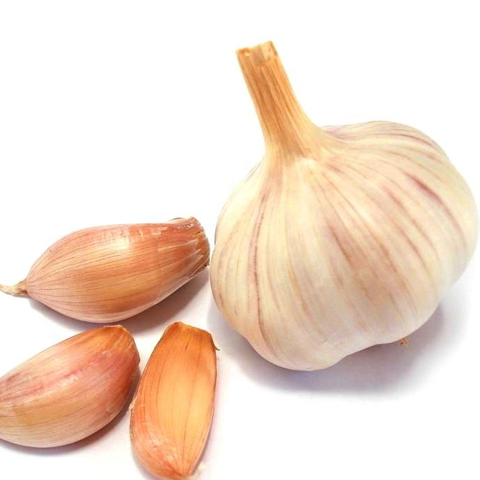 Chinese Wholesale Garlic Price - new crop, hot sales