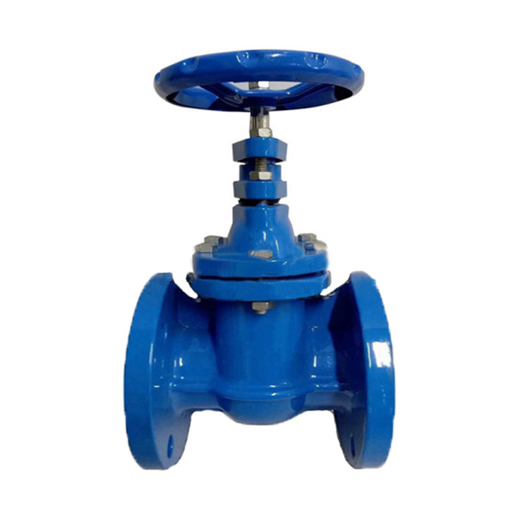 DN80-400 BS AWWA Ductile Iron Gate Valve With Flange