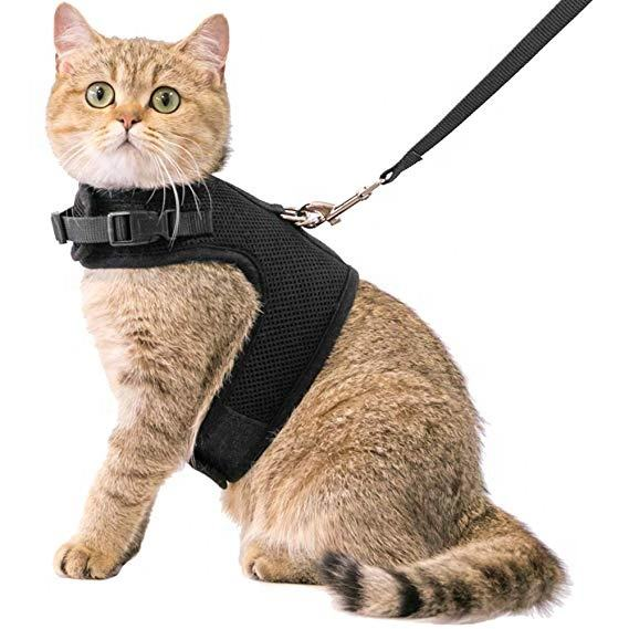 Black air mesh collar cat harness adjustable with leash