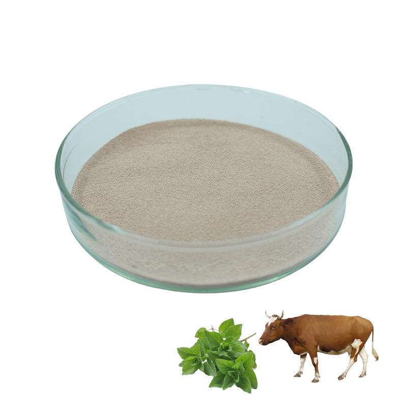 Bulk cattle feed oregano oil premix for cattle