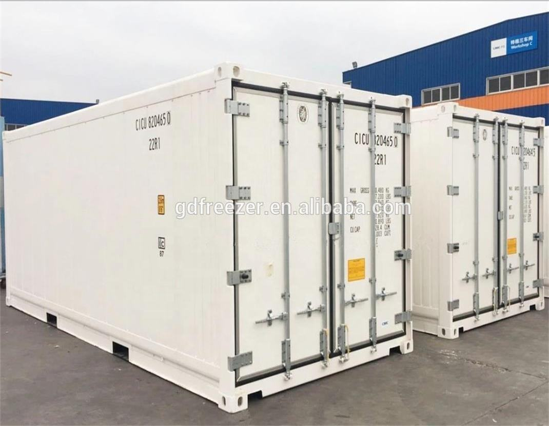 China Supplier 20 feet Reefer Container with Thermo King, Carrier or Daikin